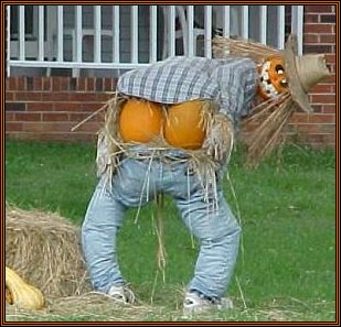 4 Funny Halloween Photos You've Got to See