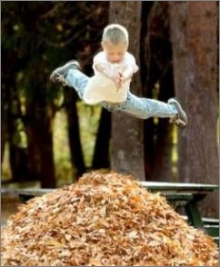 funny photo boy leaves jump fall